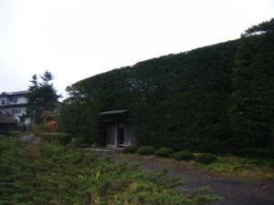 第二次・富士山、忍野八海、氷穴、河口湖のもみじ回廊・17