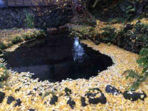 第二次・富士山、忍野八海、氷穴、河口湖のもみじ回廊・13