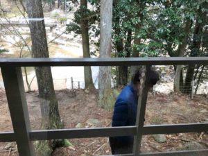 【ばちぇキャン】かぶとの森テラス、ブログ・23