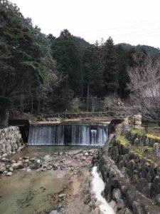 【ばちぇキャン】かぶとの森テラス、ブログ・64