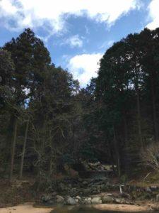 【ばちぇキャン】かぶとの森テラス、ブログ・11