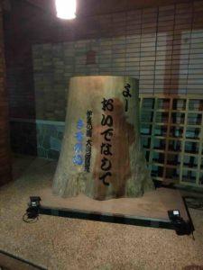 【ばちぇキャン】かぶとの森テラス、ブログ・46