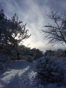 戸隠の雪・10