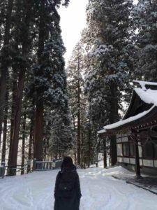戸隠の雪・8(戸隠神社)