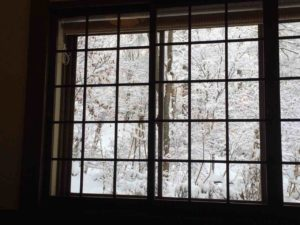 戸隠の雪・5(そばの実)